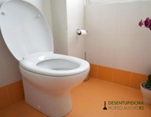 Desentupir vaso sanitário por conta própria requer atenção e prática